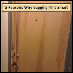 5_Reasons_Why_Bugging_IN_is_Smart-300x298